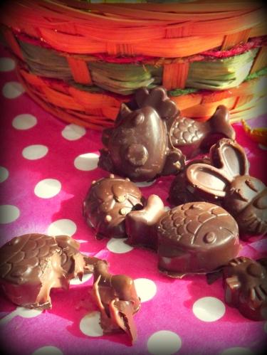Chocolat praliné3