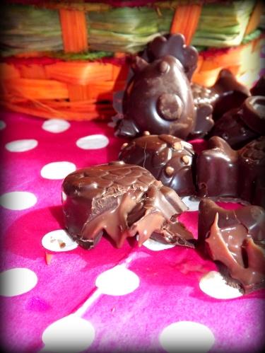 Chocolat praliné4